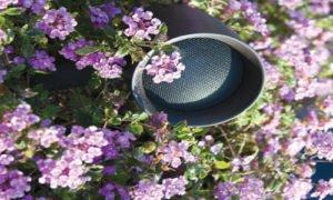 Bloomington Speaker System