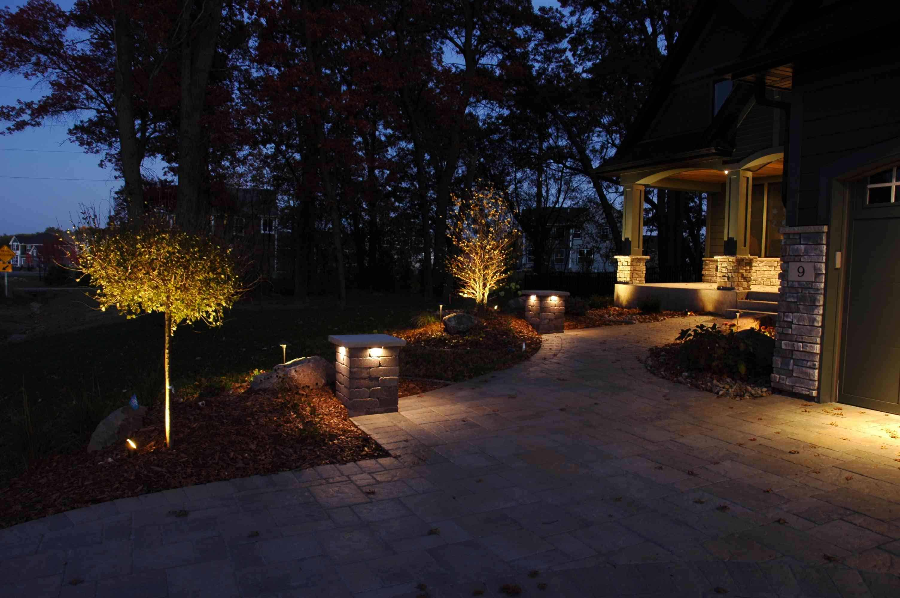 Landscape Tree Shrub Lighting